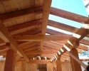 Pine Canyon Home Design - roof